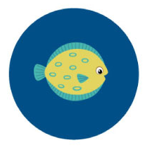 Flounder - 3 years and up (Beginner)